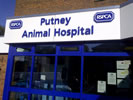 RSPCA Proposing Closure of Putney Animal Hospital