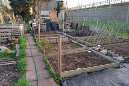 Petition Launched To Save Southfields Allotments
